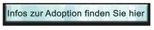 button_adoption